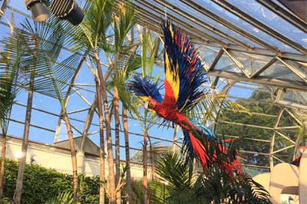Danrare Botanical Gardens