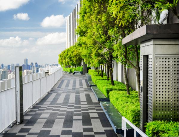 Amazing rooftop garden