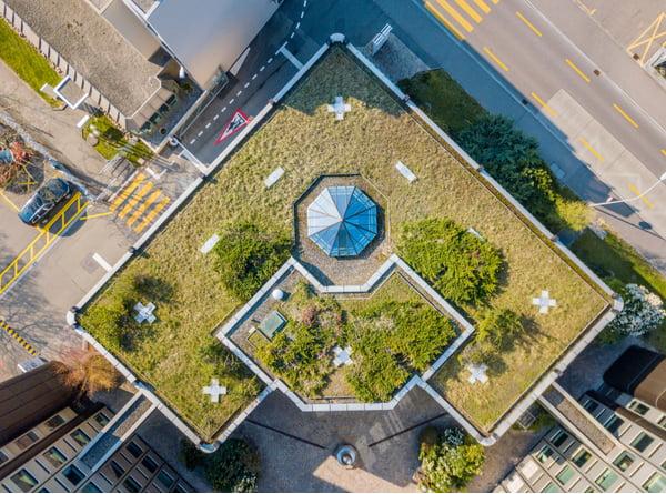 Aerial view of roftop garden