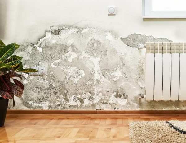 Stain in wall