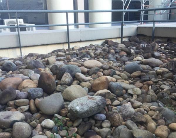 Plenty of stones