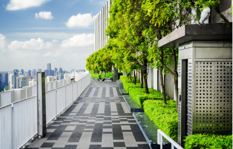 Rooftop garden on a building
